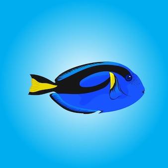 Ilustracja kolorowe ryby wektor ręcznie rysowane dla książki z obrazkami