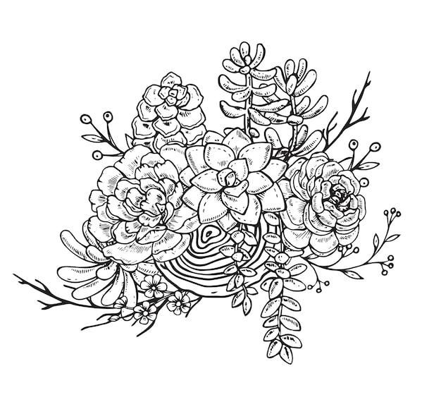 Ilustracja kompozycji wyciągnąć rękę sukulentów. czarno-biała grafika do druku, kolorowanka. na białym tle.