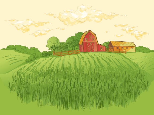 Ilustracja krajobraz pola pszenicy wiejskiej