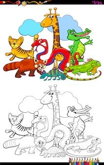 Ilustracja kreskówka kolorowanka zwierząt grupy