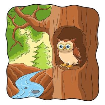Ilustracja kreskówka sowa jest przed jego domem