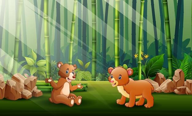 Ilustracja kreskówka z dwóch niedźwiedzi w tle lasu bambusowego