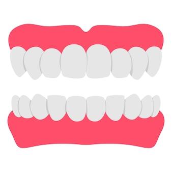 Ilustracja kreskówka zęby protezy na białym tle.