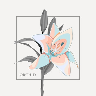 Ilustracja kwiat orchidei