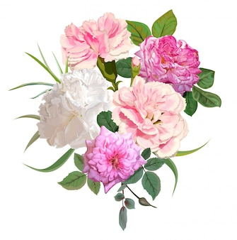 Ilustracja kwiat róży i goździków