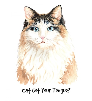 Ilustracja ładny kot akwarela.