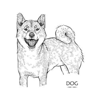 Ilustracja ładny pies