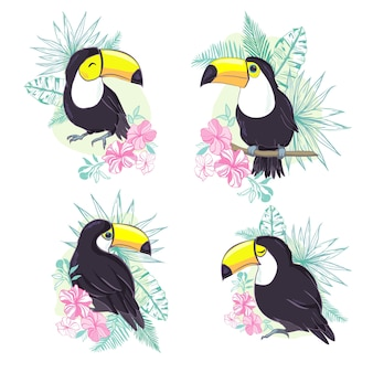 Ilustracja ładny tukan w formacie wektorowym. śliczny obraz ptaka tukana do edukacji dzieci i zabawy w przedszkolu i szkołach oraz do dekoracji. kolekcja zwierząt z dżungli