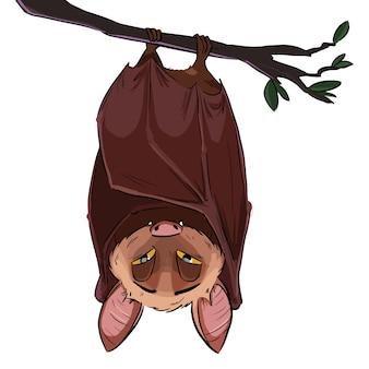 Ilustracja latającego nietoperza wiszącego do góry nogami