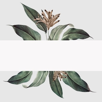 Ilustracja makieta roślin tropikalnych