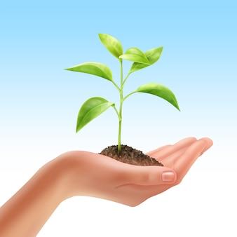Ilustracja młodych świeżych roślin w ludzkiej dłoni