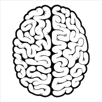Ilustracja mózgu, umysłu lub inteligencji