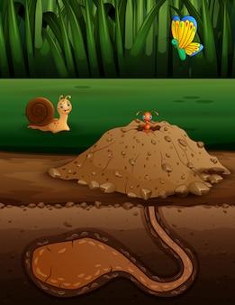 Ilustracja mrowisko i owady
