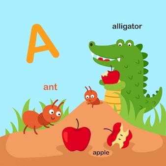 Ilustracja na białym tle alfabet zwierząt litera a