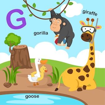 Ilustracja na białym tle litera alfabetu g.
