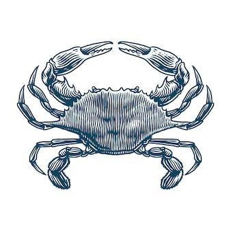 Ilustracja niebieski grawerowanie kraba