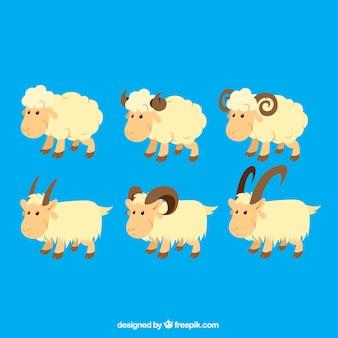 Ilustracja owiec i kóz
