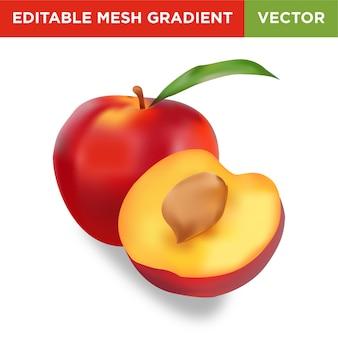 Ilustracja owoców nektaryny