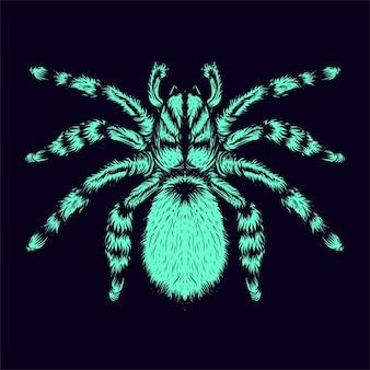 Ilustracja pająka całego ciała