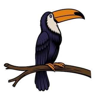 Ilustracja papuga tukan na białym tle