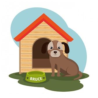Ilustracja pies sklep zoologiczny