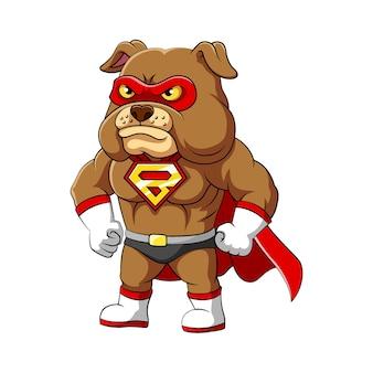 Ilustracja przedstawiająca super buldoga o poważnej i wściekłej twarzy oraz muskularnym ciele