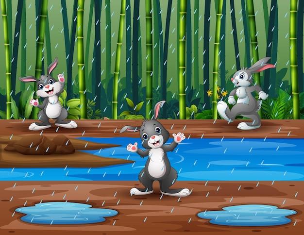 Ilustracja przedstawiająca trzy króliki bawiące się pod deszczem