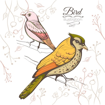 Ilustracja ptaka. ręcznie robione tło.