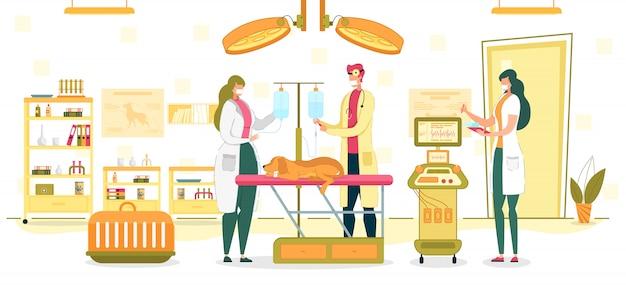 Ilustracja sali operacyjnej lekarza weterynarii bada lub chirurgia