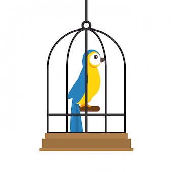 Ilustracja sklep zoologiczny ptak