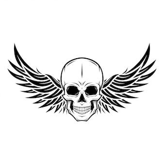 Ilustracja skrzydła czaszki
