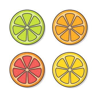 Ilustracja świeżych owoców cytrusowych. pomarańcza, winogrono, cytryna, wapno na białym tle