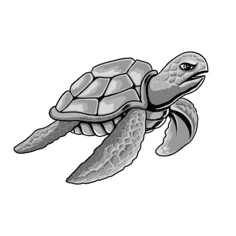 Ilustracja szary żółw