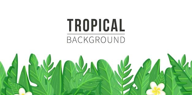 Ilustracja trawy z liści w tle. rośliny tropikalne. potworne i palmowe liście dżungli, zielone egzotyczne liście, ozdobna kolekcja naturalnych roślin.