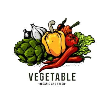 Ilustracja warzyw