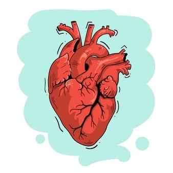 Ilustracja wektorowa anatomiczne serca