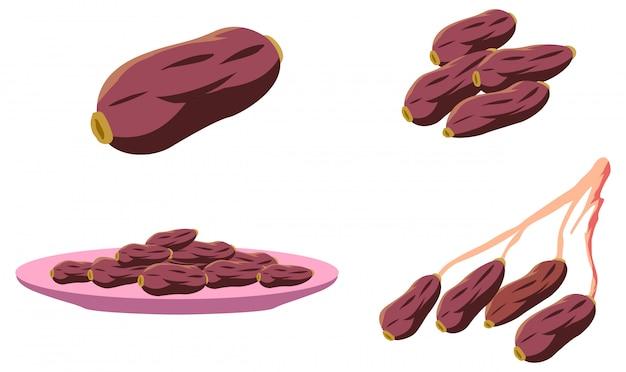 Ilustracja wektorowa dat owoców