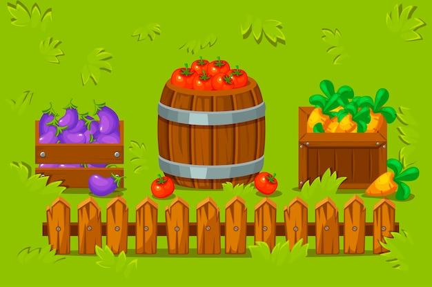 Ilustracja wektorowa drewnianych skrzynek i beczki z warzywami. łąka z trawą i drewnianym płotem.