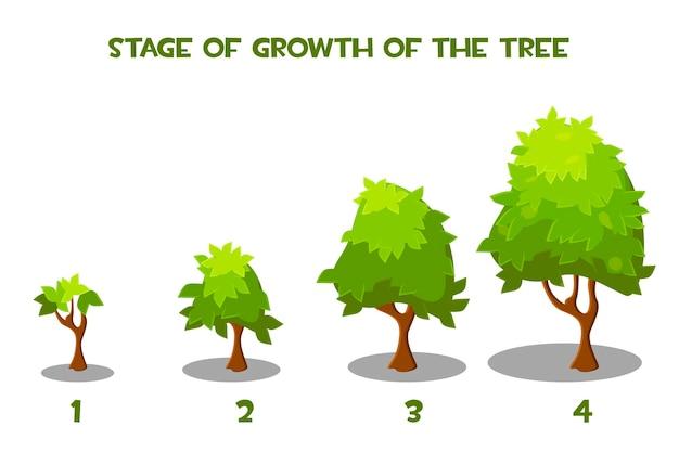 Ilustracja wektorowa etapów wzrostu drzewa kreskówki. pojedyncze zielone drzewa w trakcie wzrostu.