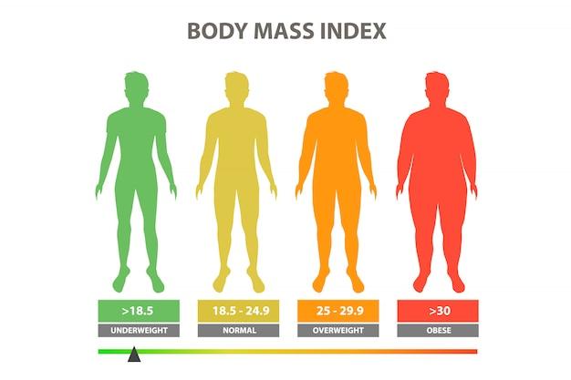 Ilustracja wektorowa indeksu masy ciała