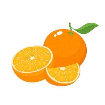 Ilustracja wektorowa jasny kolorowy soczysty pomarańczowy na białym tle, organiczne owoce cytrusowe