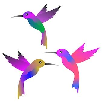 Ilustracja wektorowa kolibry