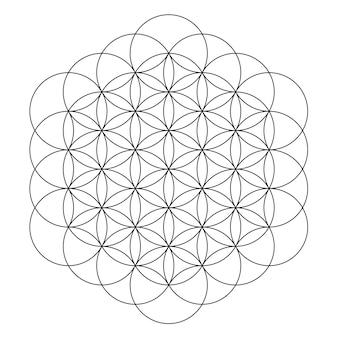 Ilustracja wektorowa kwiat życia świętej geometrii