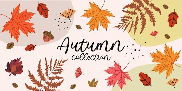 Ilustracja wektorowa nowej jesiennej kolekcji, wyprzedaży zakupów lub plakatu promocyjnego lub układu banerów internetowych ozdobionych kwiatowymi elementami, takimi jak szyszka sosny, żołądź, kolorowe liście klonu i dębu oraz paproć.