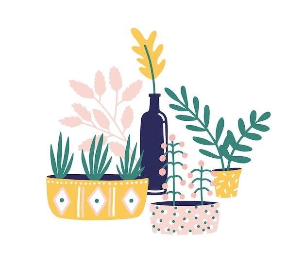 Ilustracja wektorowa płaskie doniczkowe rośliny doniczkowe. sukulenty, kwiaty i zielone zioła do dekoracji domu na białym tle