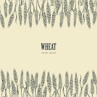 Ilustracja wektorowa pola pszenicy, idealny do pakowania chleba, etykiet piwa