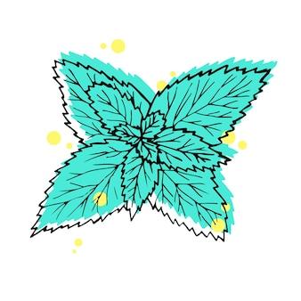 Ilustracja wektorowa. ręcznie rysowane liście mięty. czarna linia z zielonym i żółtym na białym tle.