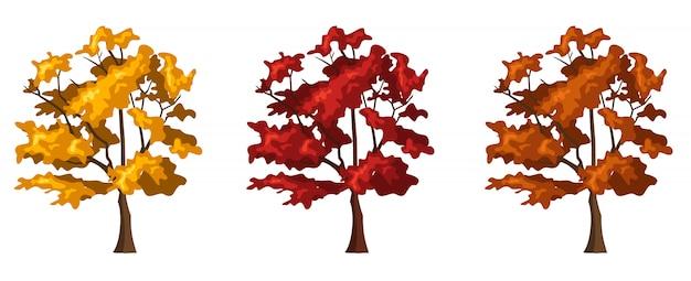 Ilustracja wektorowa trzech drzew jesienią na białym tle.