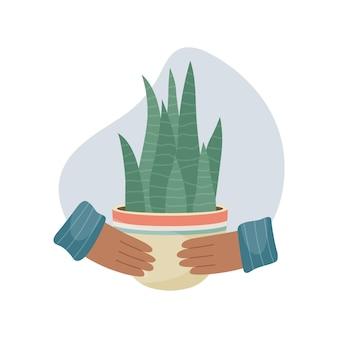 Ilustracja wektorowa z rośliną domową w doniczce w ręce. rośliny ozdobne we wnętrzu domu. płaski styl.