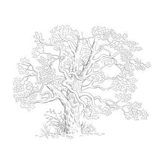 Ilustracja wektorowa z szkic drzewa czarno-biała linia sztuki